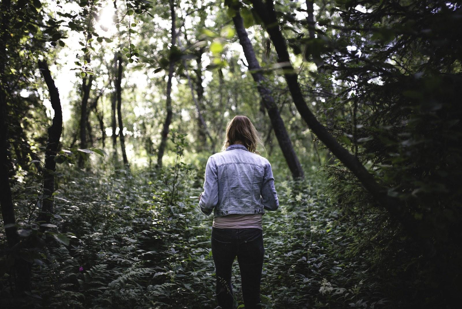 S'engouffrer dans les bois