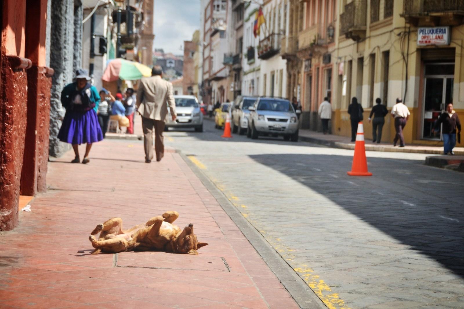 Having good times Cuenca