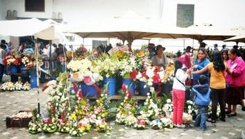 Marche aux fleurs de cuenca