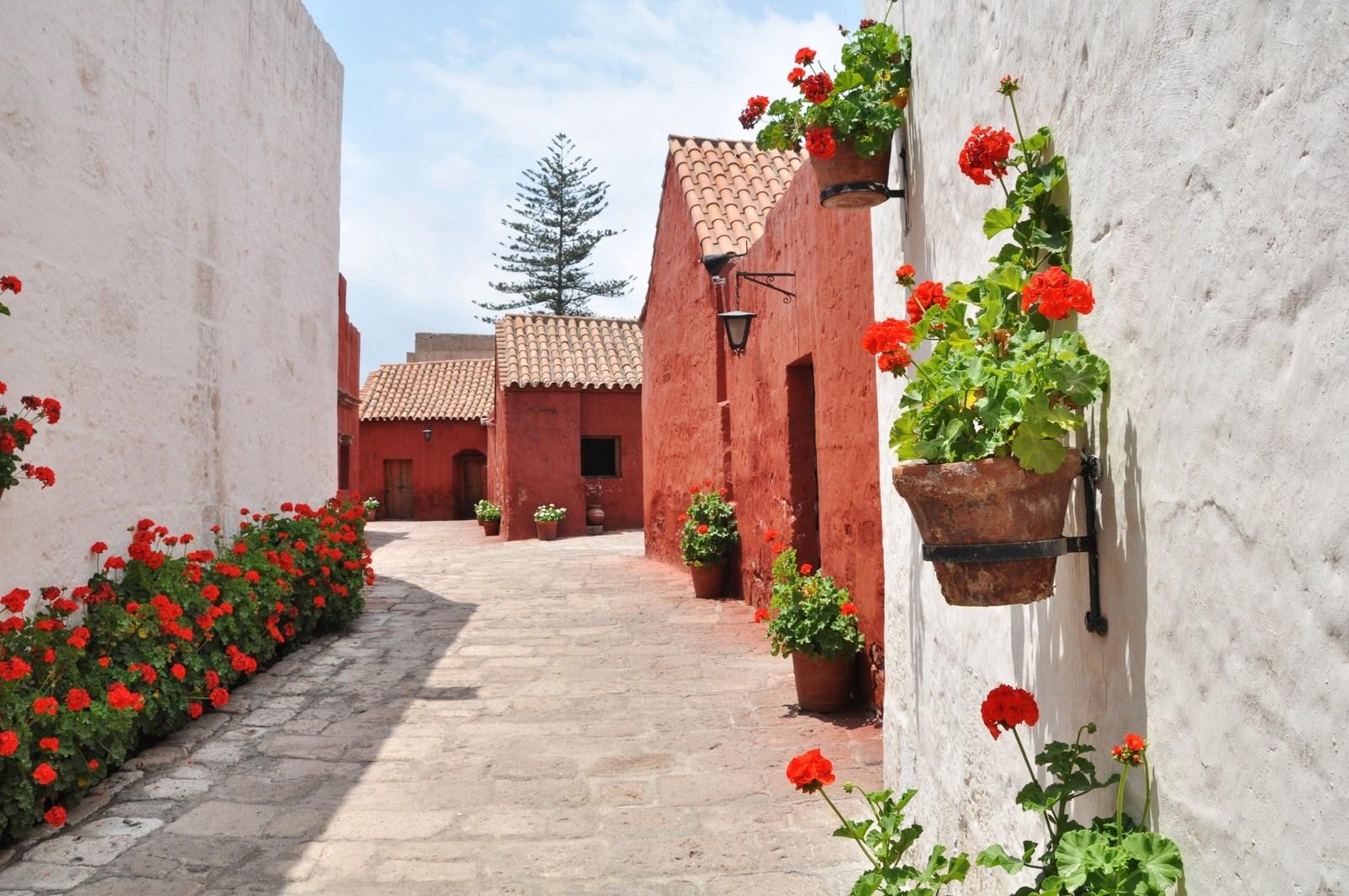 D couverte d 39 arequipa ville du sud p rou et de santa catalina - Mise a la porte du couvent ...
