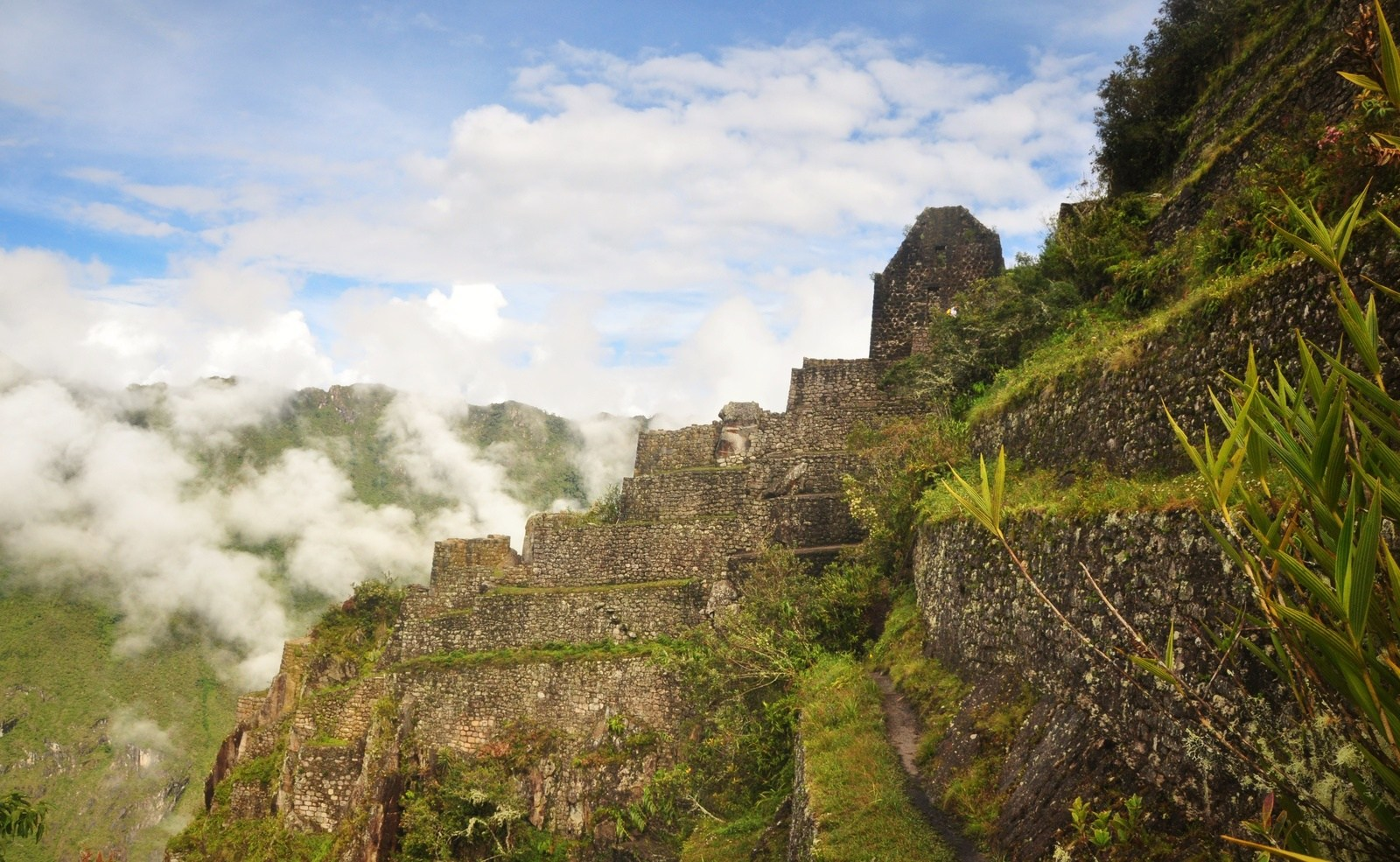 Vue depuis le Wayna Picchu Huayna Picchu