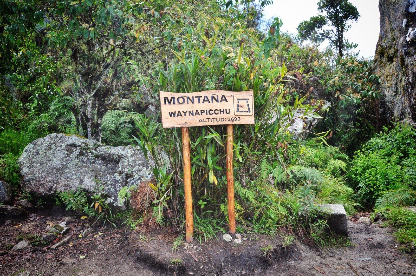 Chemin vers le Wayna Picchu Huayna Picchu