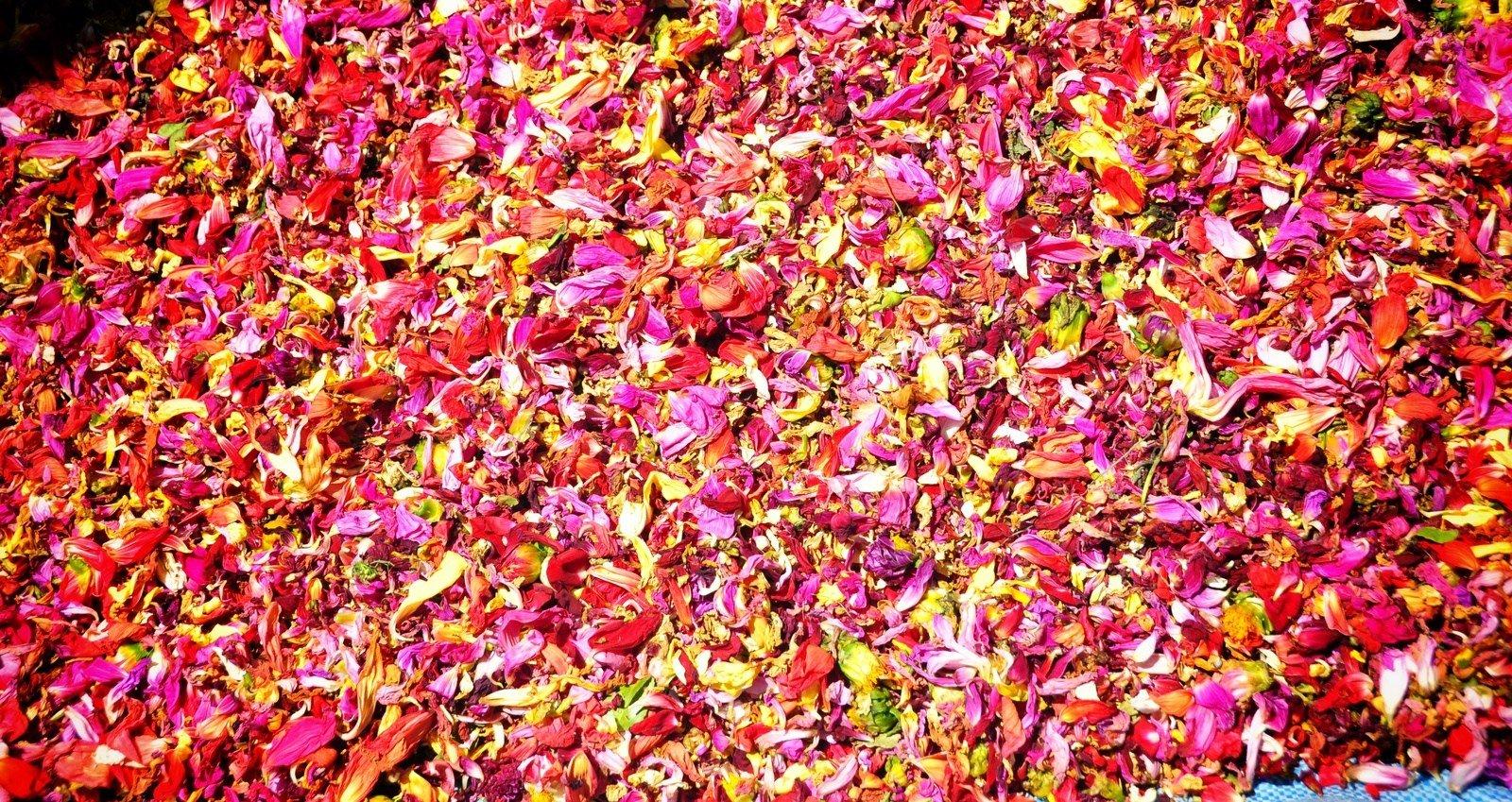 Etal de pétales de fleurs, La Paz La Paz