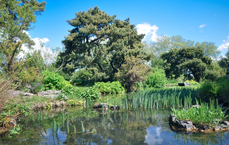 Geneve En Velo Vieux Quartier Et Jardins Botaniques