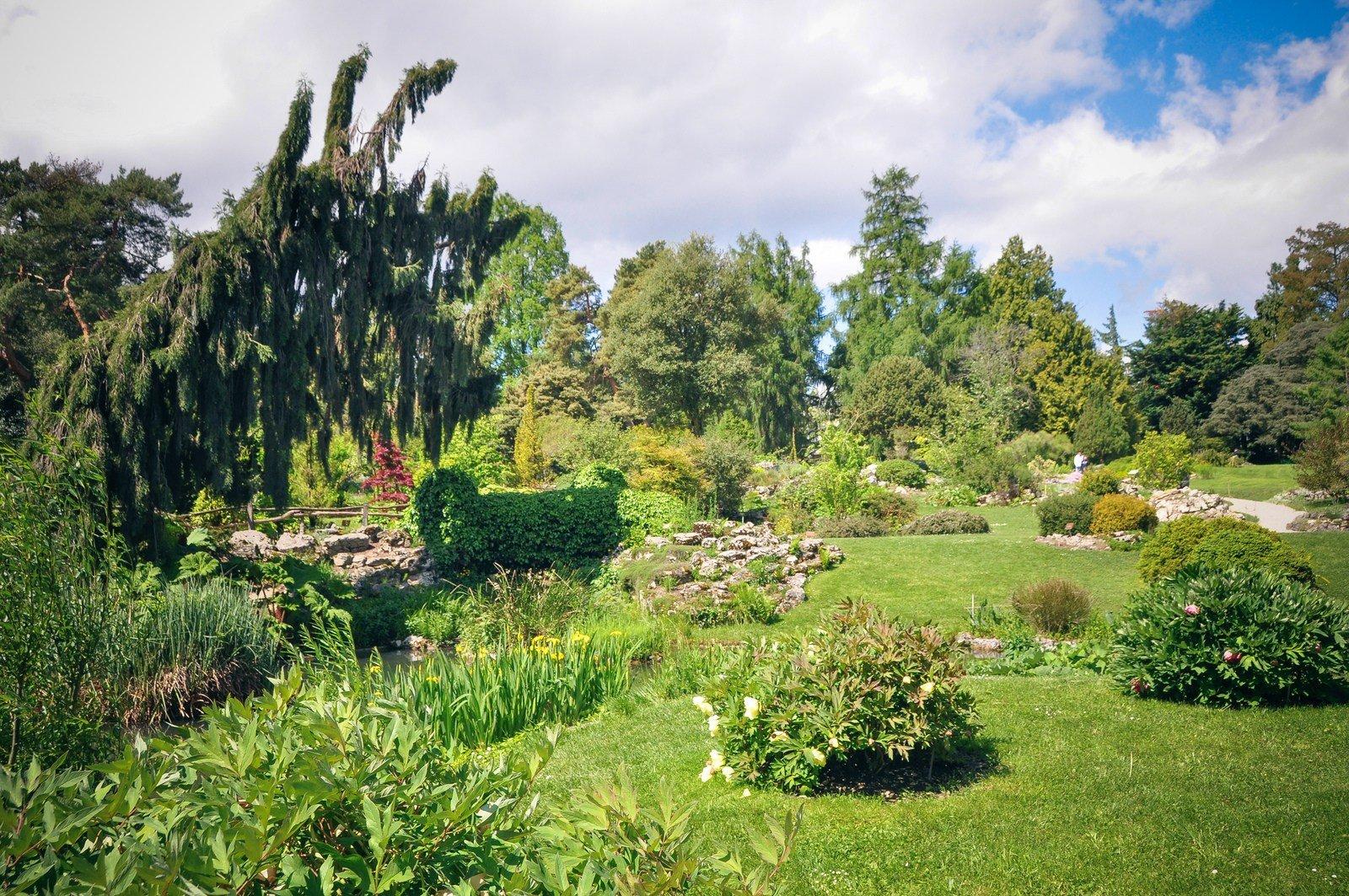 jardin botanique genve - Jardin Botanique Geneve