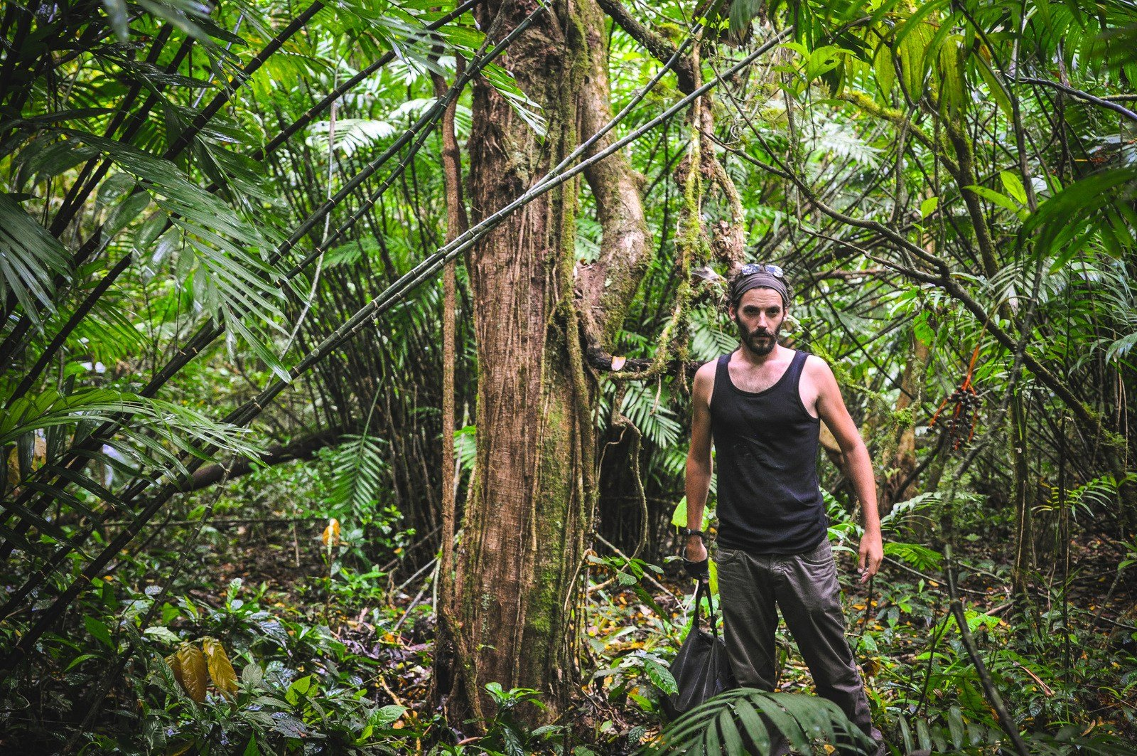 Au milieu de la jungle du Nicaragua Mombacho