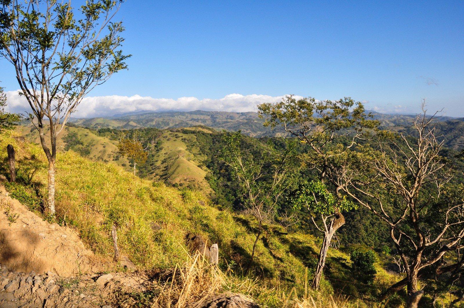 Paysages de la province de Puntarenas Monte Verde