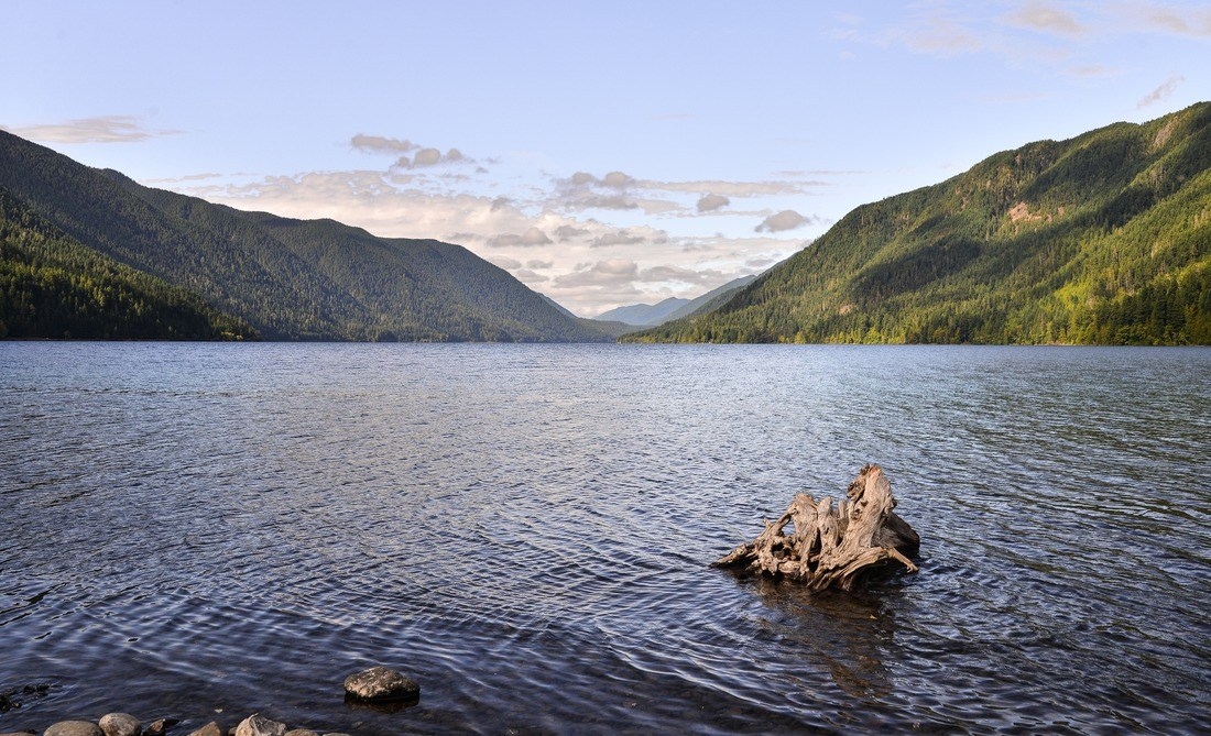Paysage de Lake Crescent