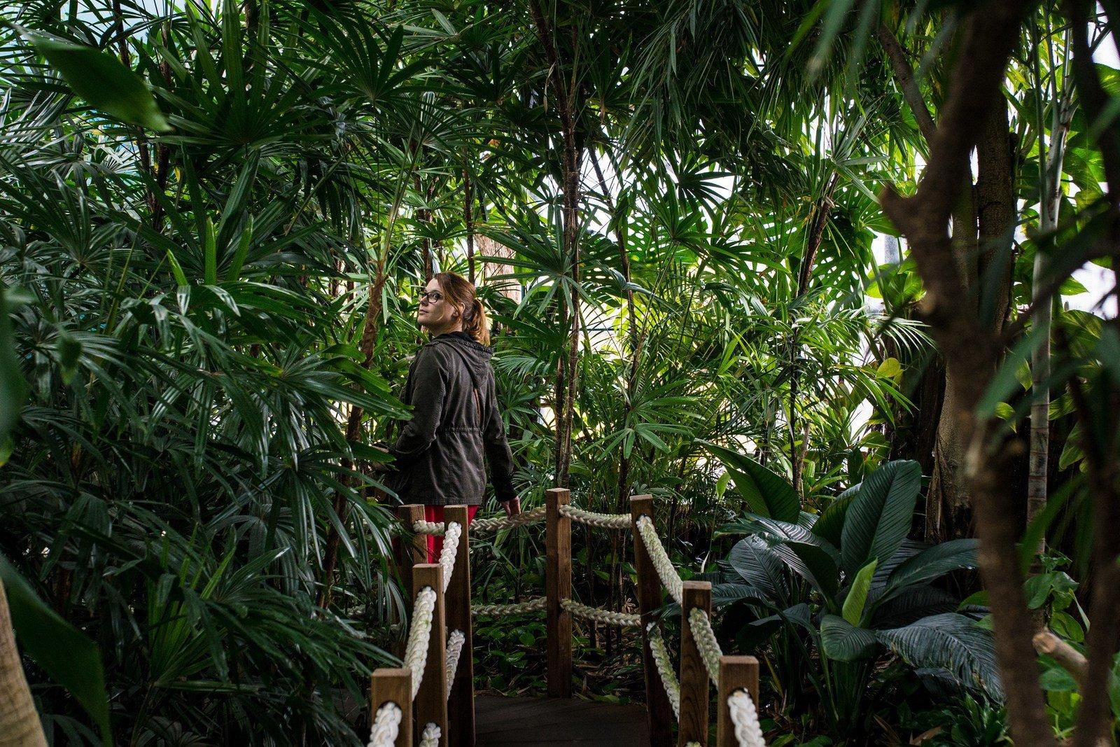 """Dans la """"jungle"""" de l'oceanorium  Lisbonne"""