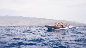 En route pour voir les dauphins