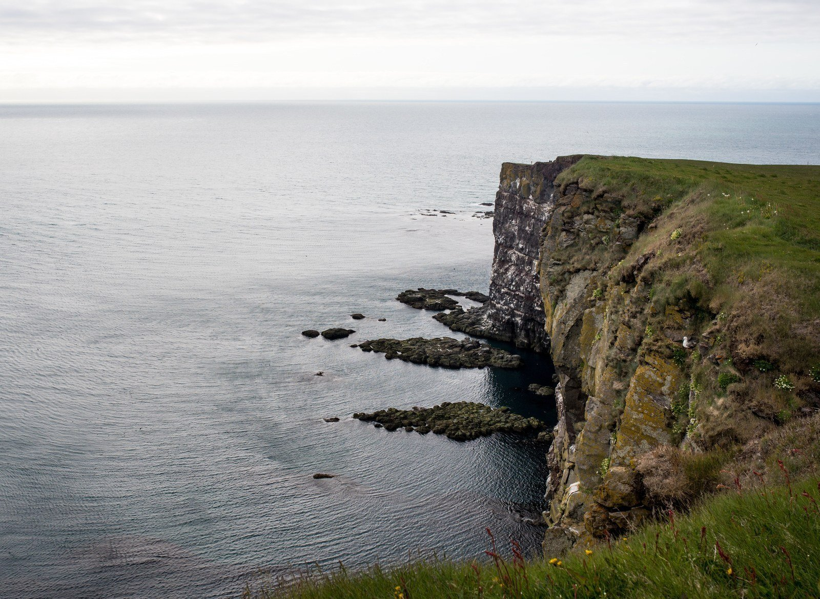 Immenses falaises de Látrabjarg Látrabjarg