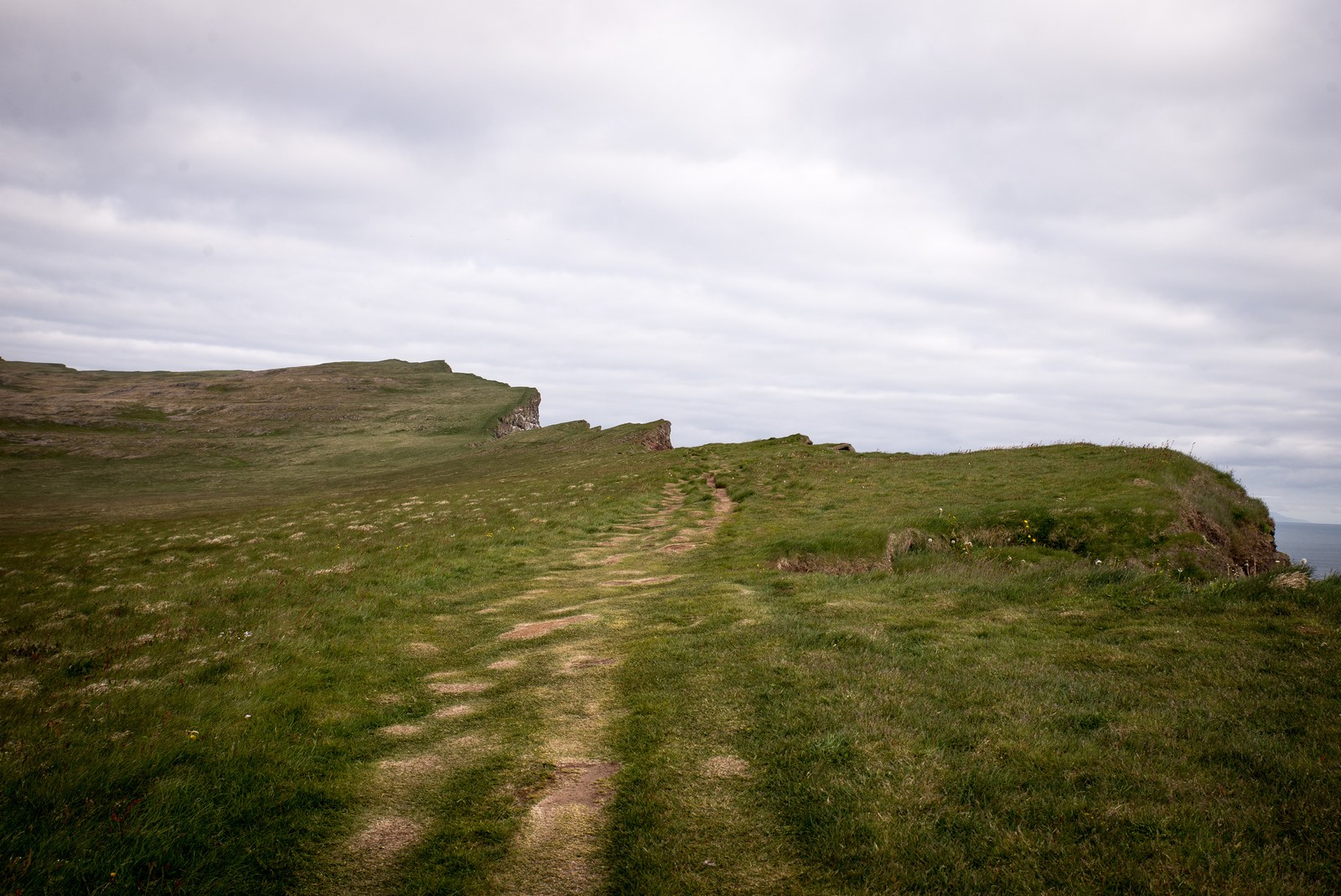 Chemin longeant le bord des falaises  Látrabjarg