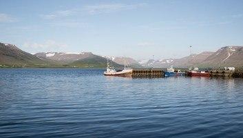 Bateaux au port de thingeyri