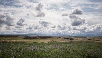 Paysage d ete en islande