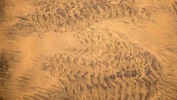 Detail de la plage de sable rouge