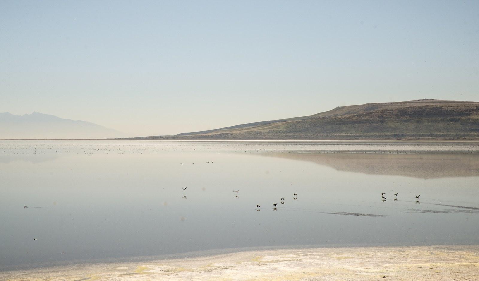 Eaux placides du lac salé  Antelope Island