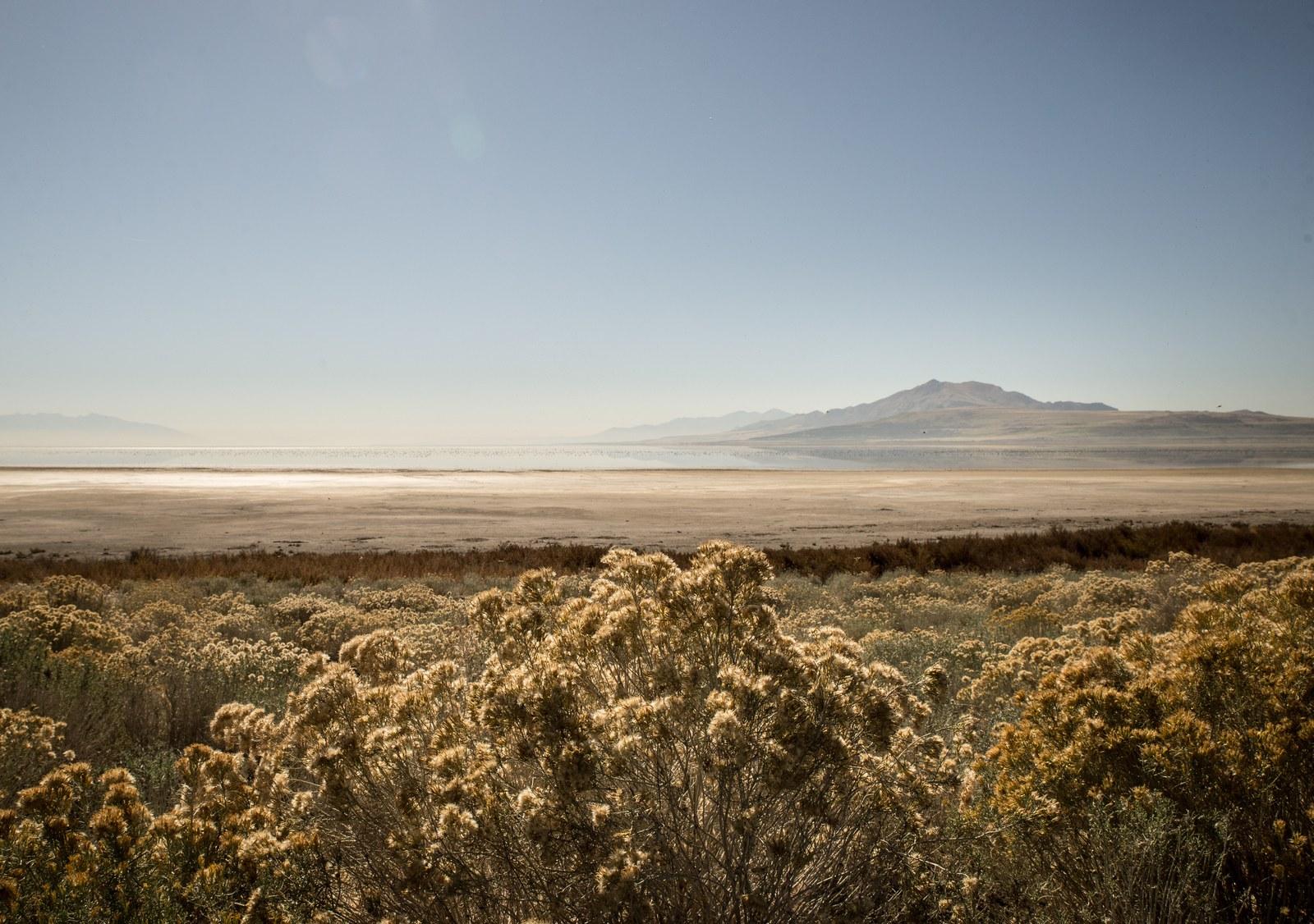 Paysage typique de Antelope Island Antelope Island