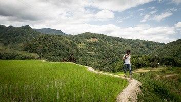 En balade dans les rizieres