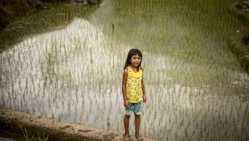 Petite fille dans les rizieres
