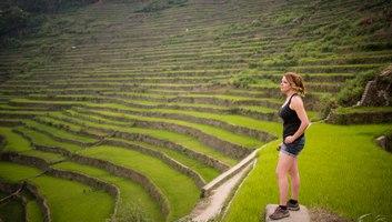 Au milieu des rizieres