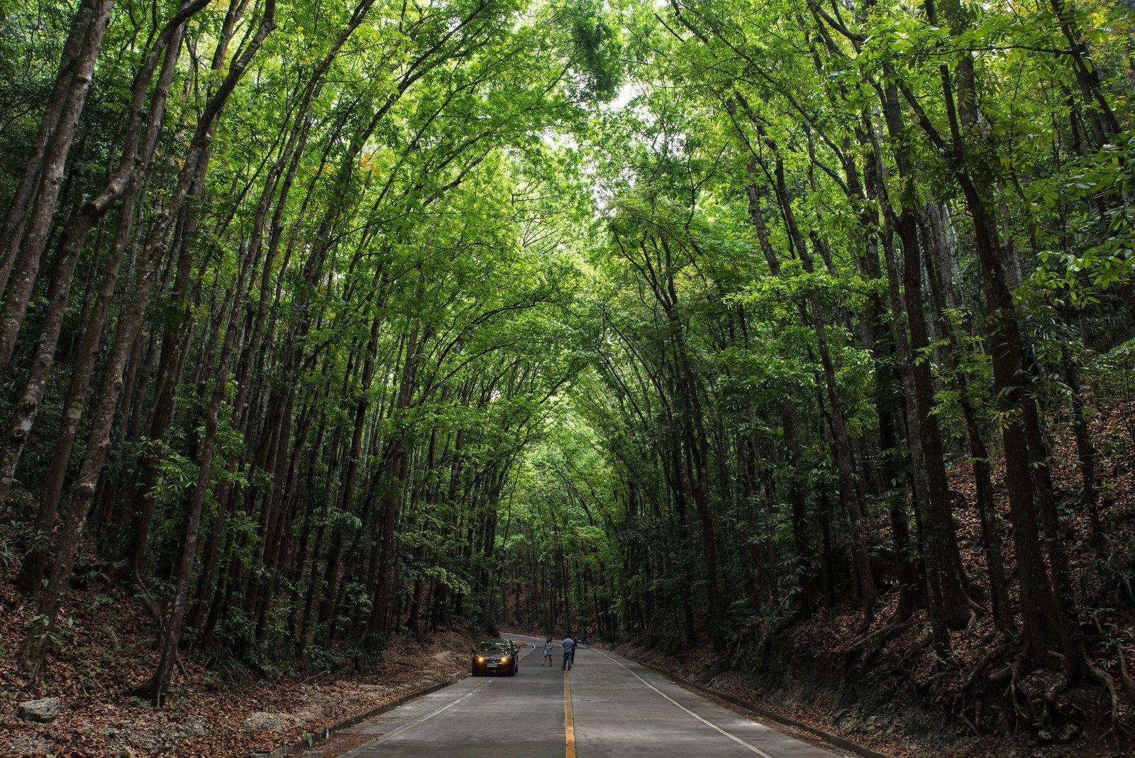Sur les routes de Bohol Loboc
