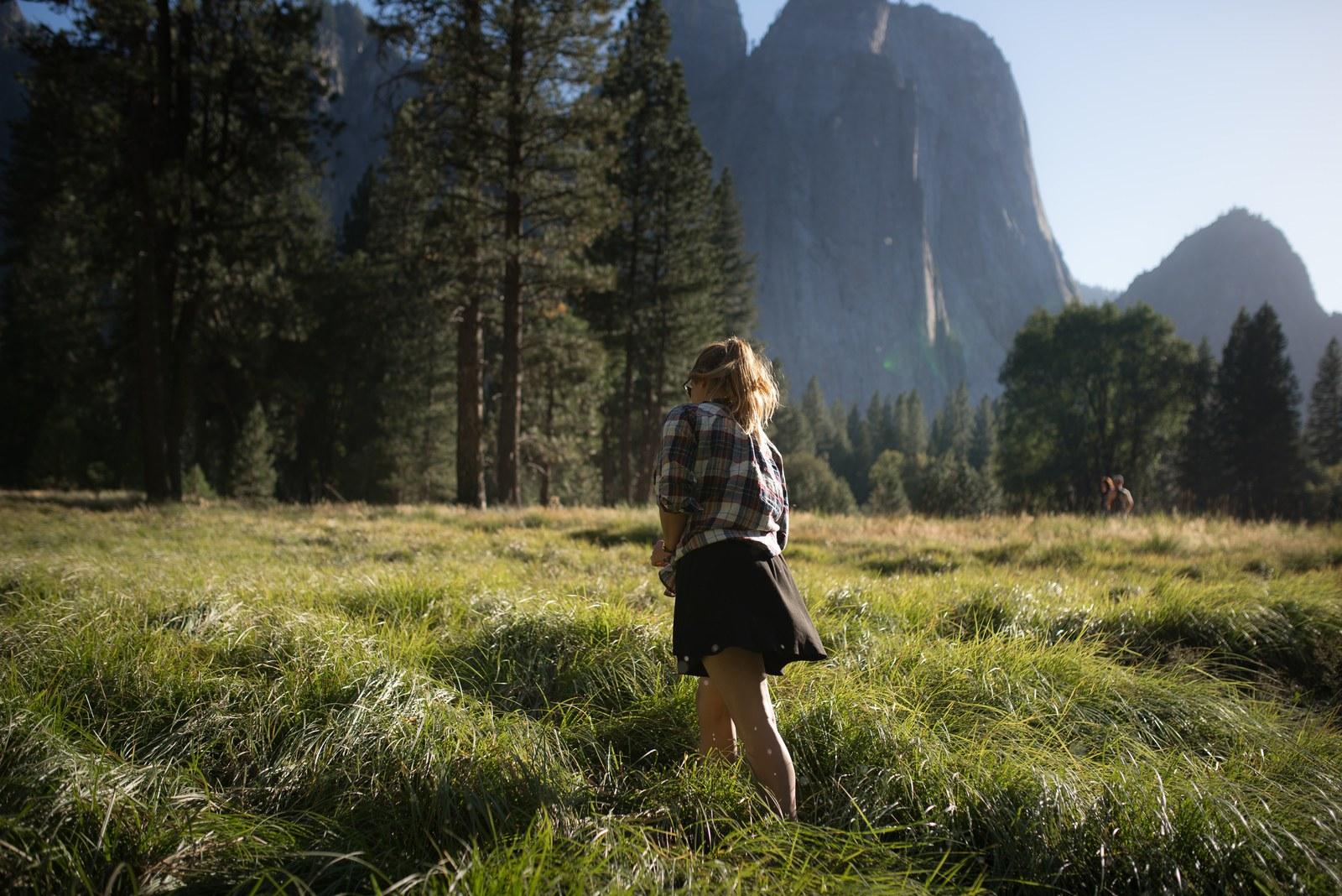 Yosemite Meadow Yosemite