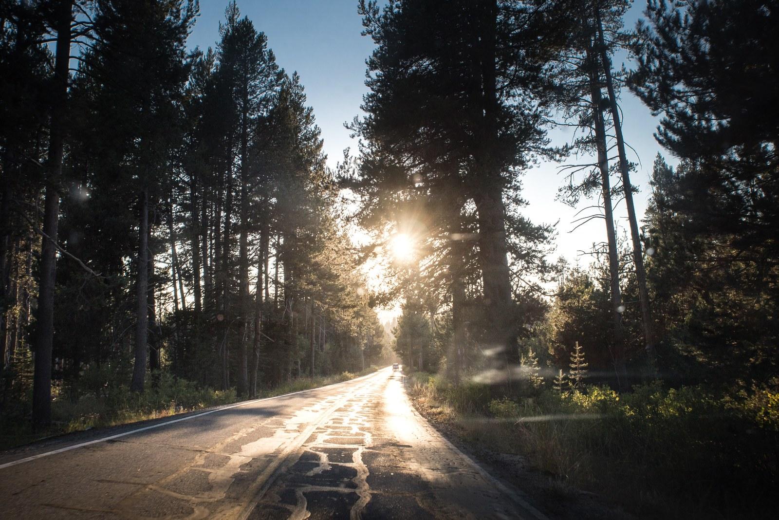 Tioga road de Yosemite Yosemite