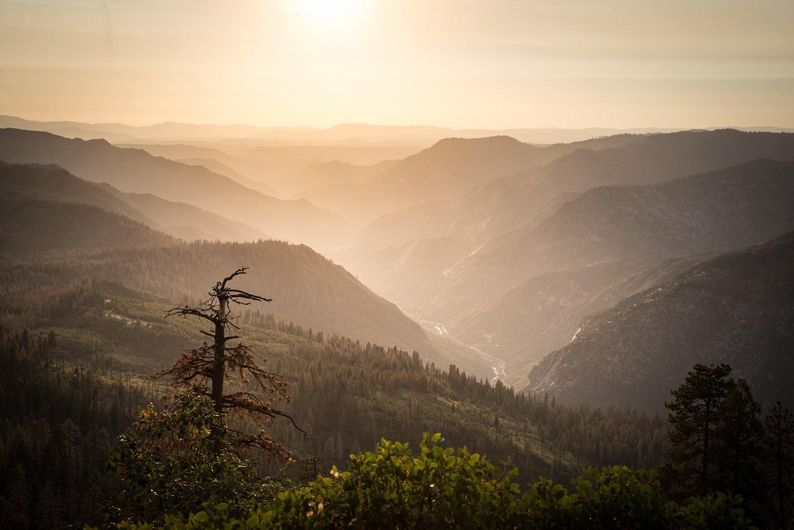 Panorama, fin de journée à Yosemite Yosemite