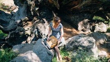 Petite pause au pied d un sequoia