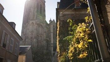 Vue sur la cathedrale au printemps
