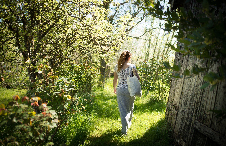 De la ville la jungle les tonnants marais de bourges for Le jardin des fleurs bourges