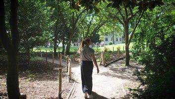 Se promener dans les jardins de l abbatiale saint ouen