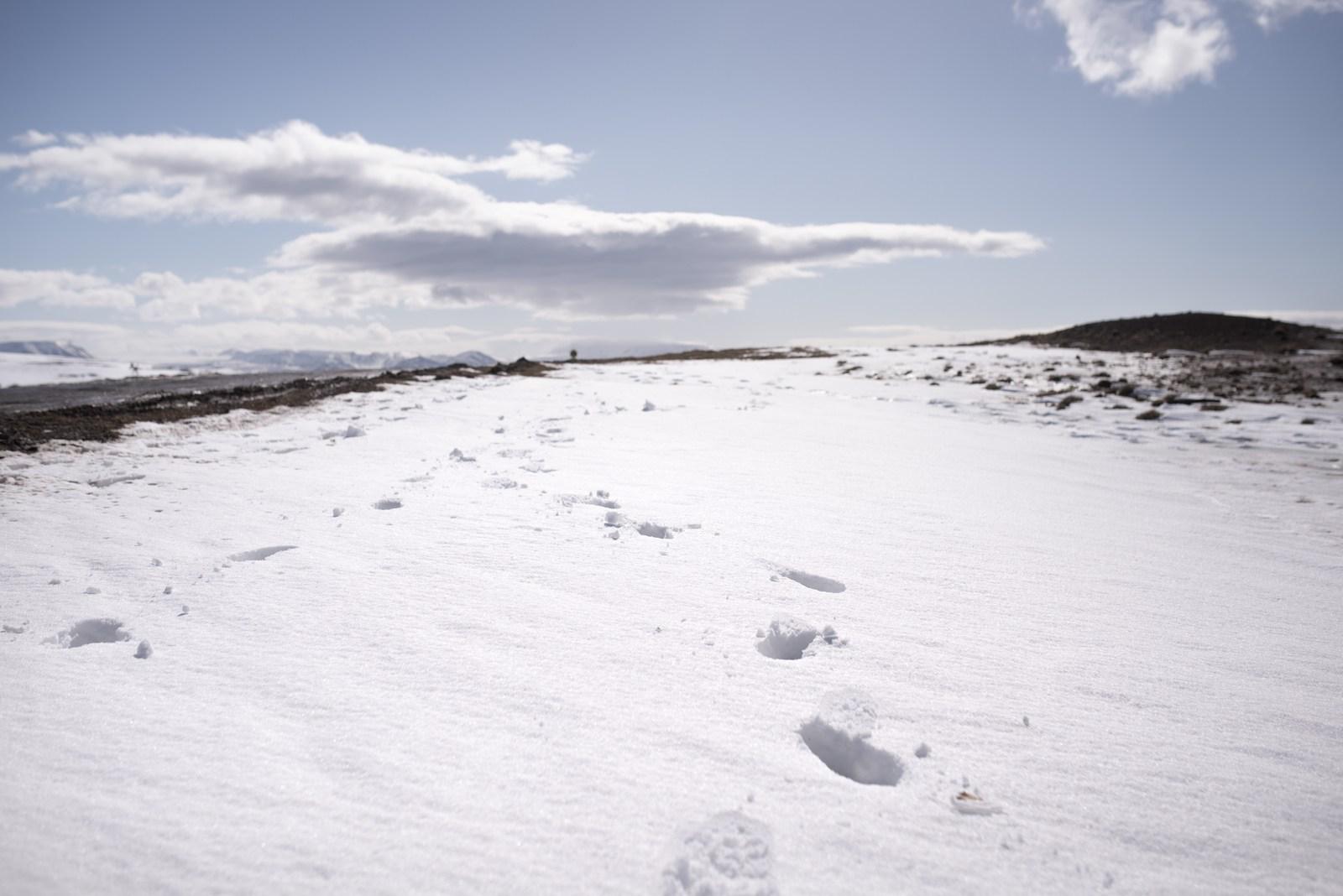 La neige en Islande
