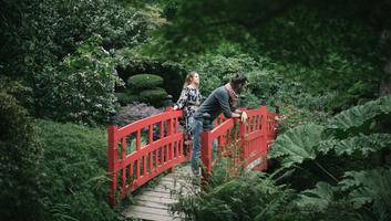 Dans le jardin botanique de haute bretagne