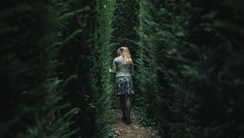 Labyrinthe vegetal a la ballue bretagne