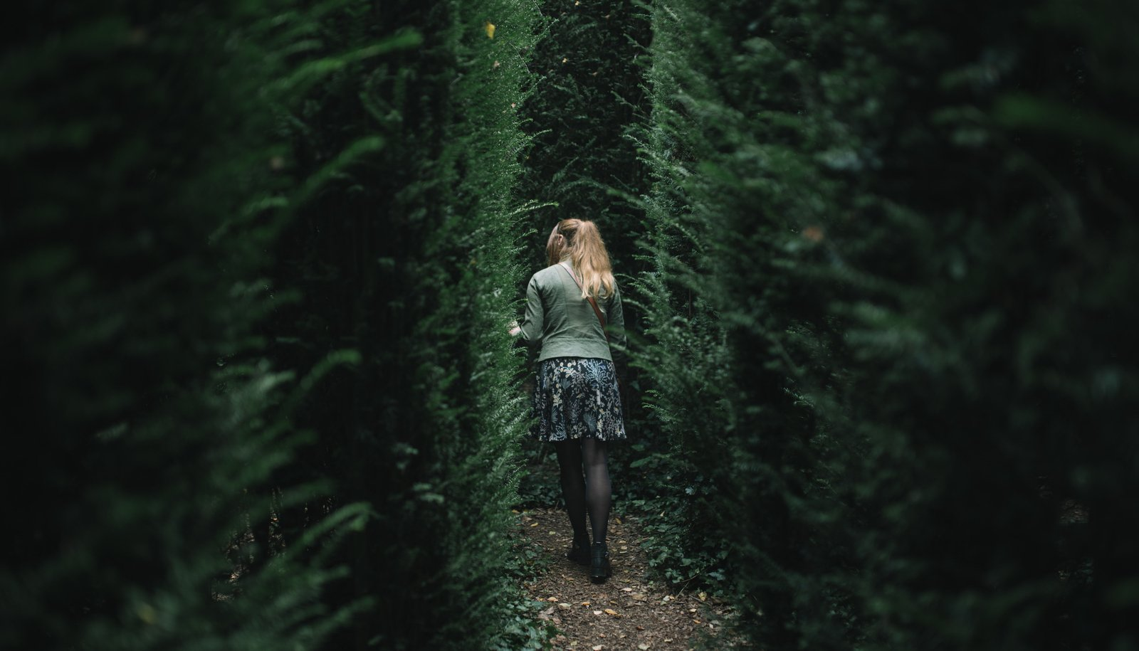 Labyrinthe végétal à la Ballue, Bretagne Bazouges-la-Pérouse