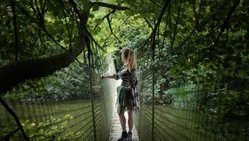 Pont suspendu parc botanique haute bretagne
