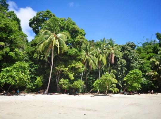 Plage paradisiaque parc manuel antonio au costa rica
